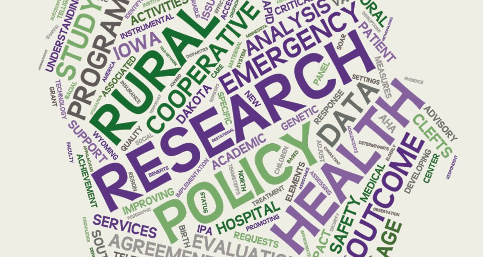 word cloud image for Center for Health Policy and Research annual report