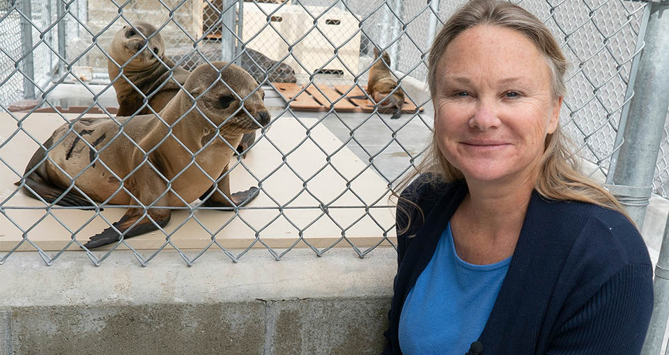 CPH alumna Lauren Palmer pictured with two seals