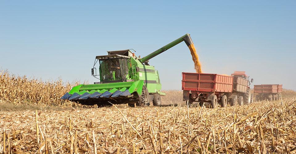 photo of a combine loading corn into a wagon