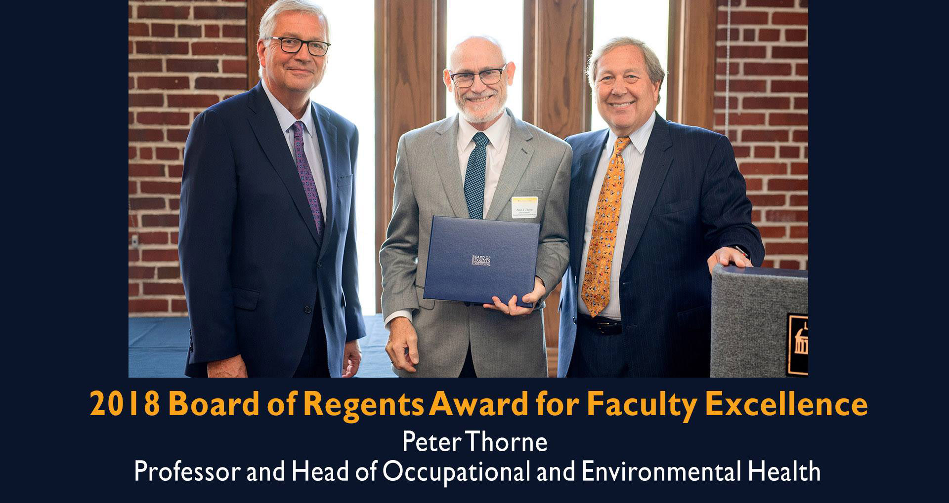 Peter Thorne 2018 Board of Regents Award for Faculty Excellence