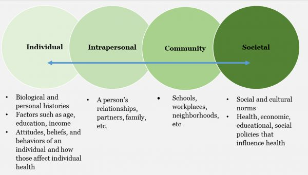 Systems Thinking: Individual, Intrapersonal, Community, Societal.