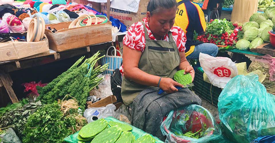 Xicotepec-market-cactus