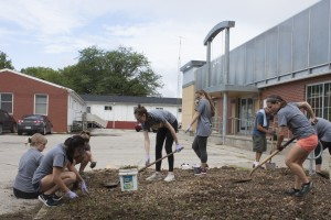 College of Public Health students help spread mulch at a day of service activity.