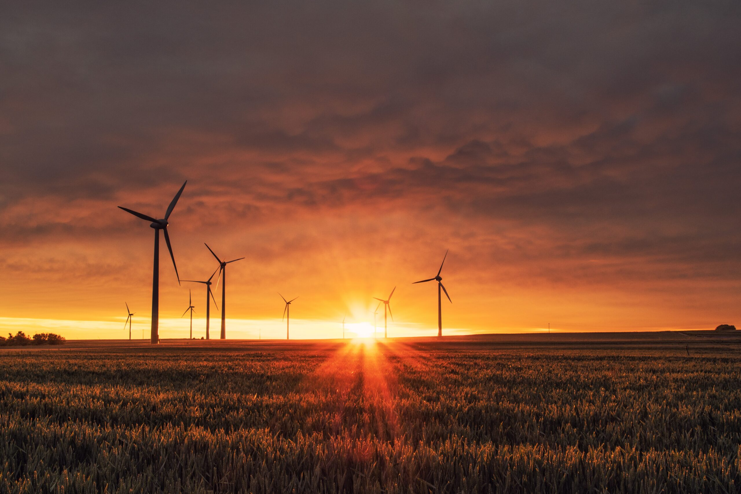 energy windmills in field at sunset