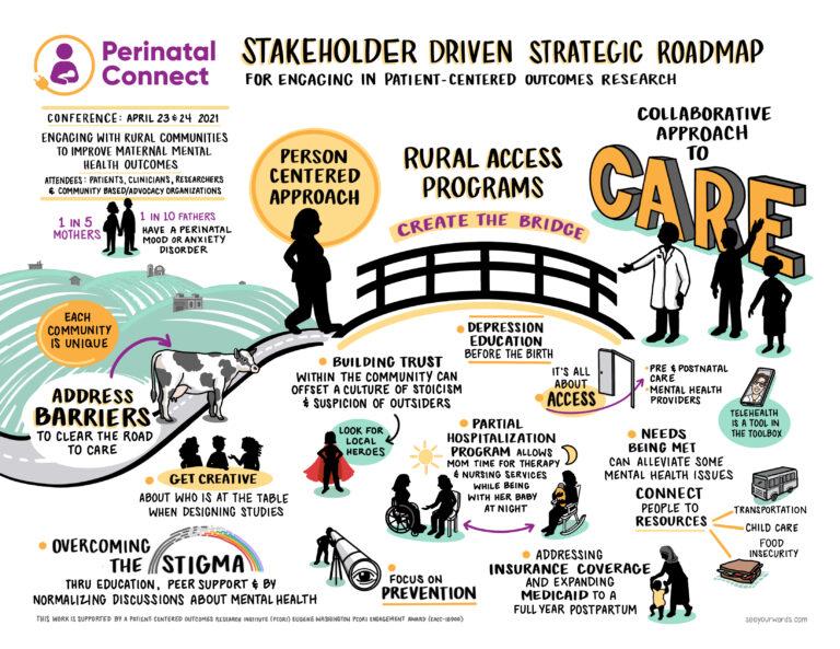 perinatal strategic roadmap infographic